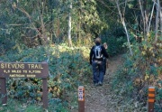 stevens trail colfax